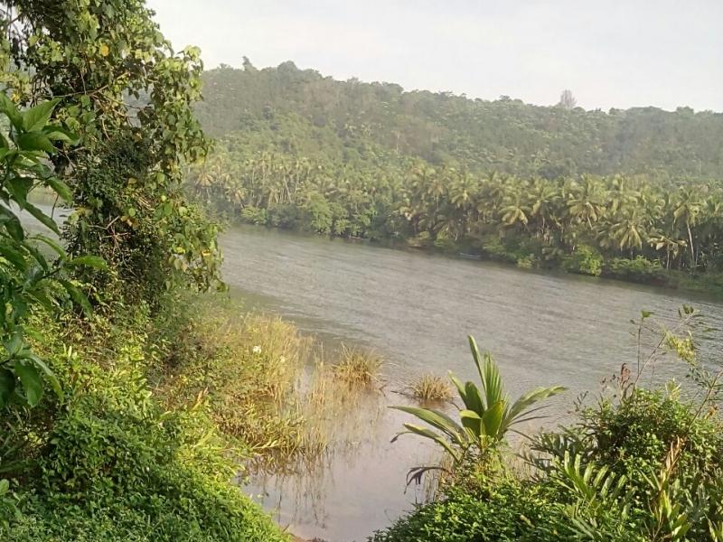 river side land for sale in near nileswar, kasaragod